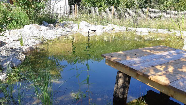 Teich zugeschnitten